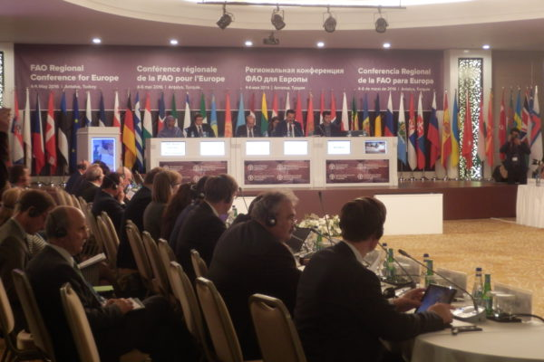fao conference europe and central asia