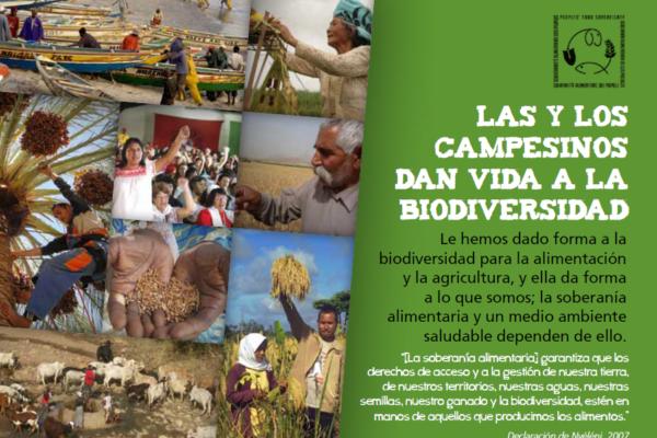 biodiversidad-brochure-es