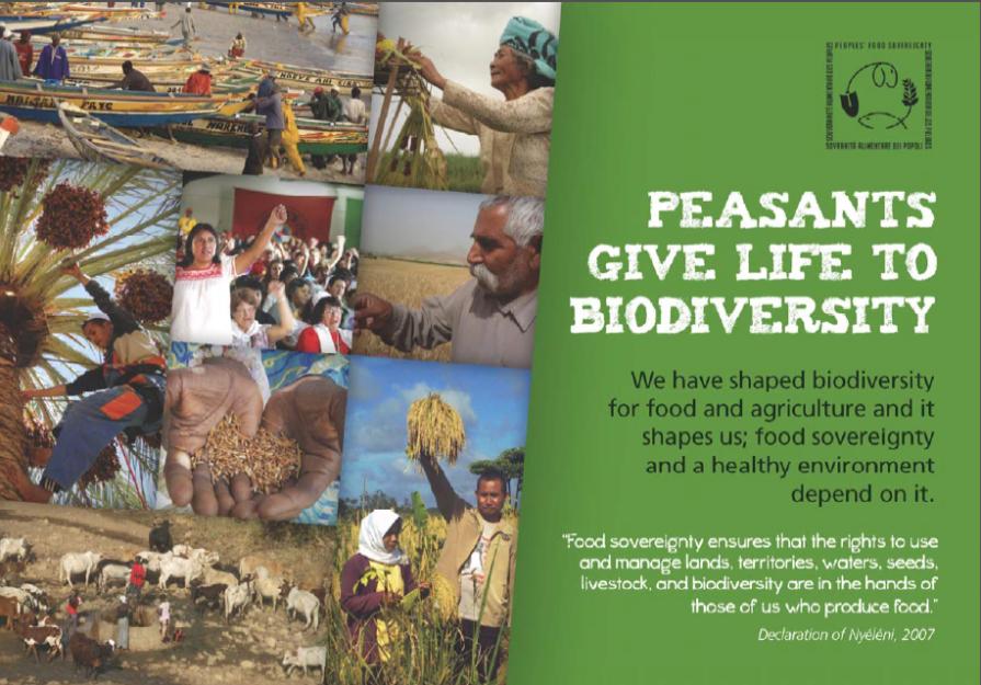 biodiversity-brochure