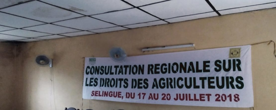 CSO African Consultation on the implementation of Farmers' Rights