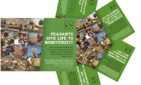 IPC Agricultural Biodiversity Brochure