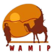 WAMIP